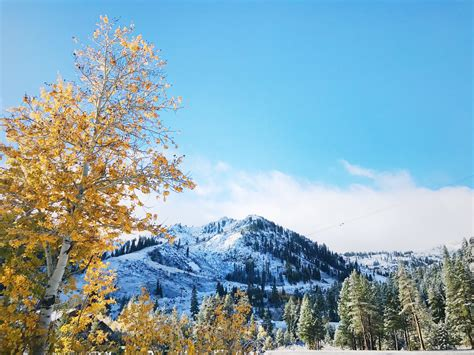 First Major Sierra Storm Forecast To Drop Snow As Low As Feet Sfgate