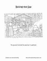 Maple Syrup Sugaring Coloring Pages Printables Worksheets Activities Word Sheets Into Dive Morning Homeschooling Craft Preschool Learning sketch template