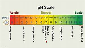 Calculating Ph Values