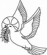 Coloring Pigeon Pigeons Coloringpages1001 Animal Animals sketch template