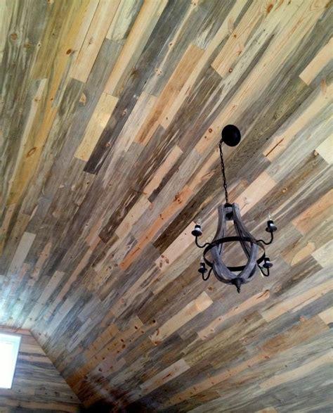 sustainable lumber co beetle kill pine celing beetle kill blue pine