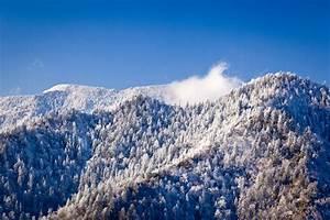 Is Mt LeConte Weather Seasonal? | gsmnp