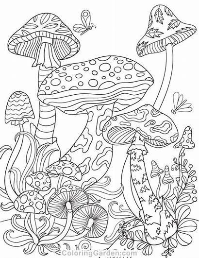 Mushroom Coloring Mushrooms Pages Adult Colouring Magic