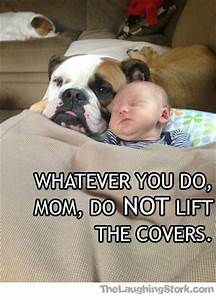 Baby Announcement Ecards Funny Baby Picture Consider Yourself Warned The