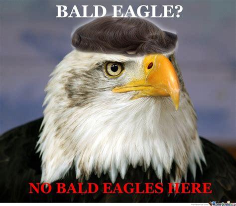 Funny Eagles Memes - what bald eagle by purdle meme center