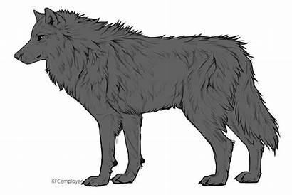 Wolf Drawing Side Base Fluffy Werewolf Deviantart
