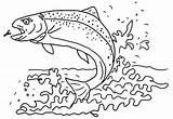 Trout Coloring Fish Sea Apache Wonderful Sheet Coloringpagesfortoddlers Printable Brown Disimpan Dari Sheets Template sketch template