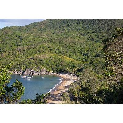 Deforestation in the Brazilian Atlantic Forest increased