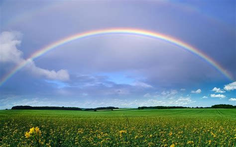 rainbow wallpaper   desktop  wallpapers
