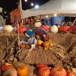 Pick Of The Patch Pumpkins San Jose by Pick Of The Patch Pumpkins Amp Abc Tree Farms 10 Fotos