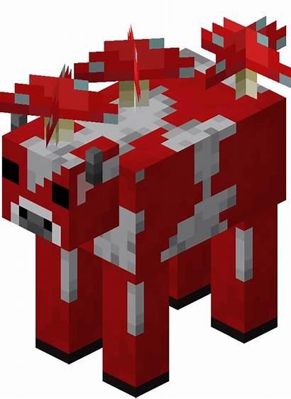 Minecraft Mooshroom Animals Farm Wiki Mushroom Wikia