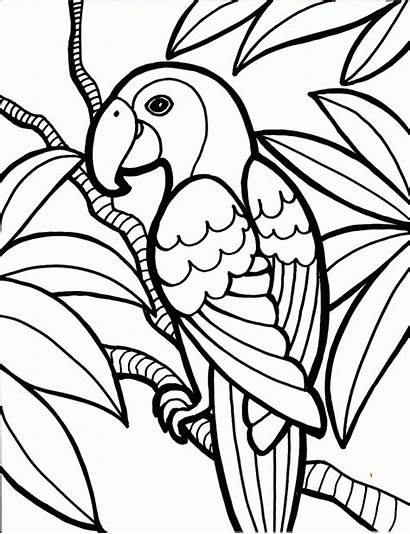 Coloring Pages Printable Teens Teen Colouring Cool