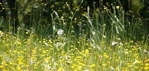 Gesunde Luftfeuchtigkeit In Räumen : luftw scher im sommer luftreiniger abc ~ Markanthonyermac.com Haus und Dekorationen