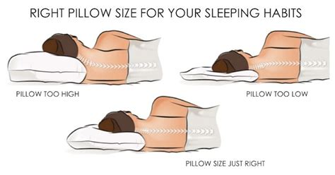 Why Are Sleepers Called Sleepers by The Ideal Pillow For A Side Sleeper
