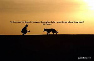 Heaven Quotes Will Rogers Dogs. QuotesGram