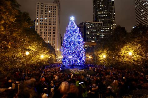 city of chicago 104th annual christmas tree