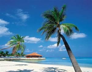 honeymoon registry honeymoon destinations honeymoon With honeymoon in the caribbean