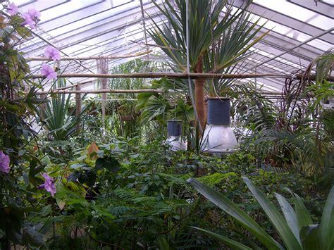 Greifswald Entdecken Eine Weltreise Im Botanischen Garten