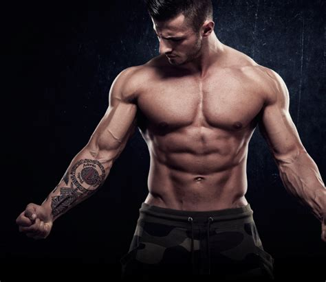 male body a breakthrough formula to the shortcut