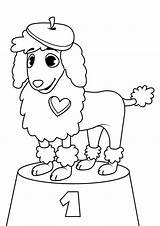 Poodle Coloring Pages sketch template
