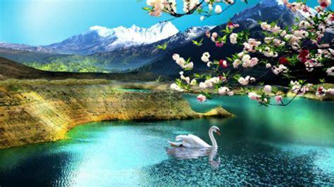 hd nature wallpapers flowers cute desktop images nature