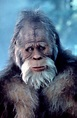 Cineplex.com | Harry and the Hendersons