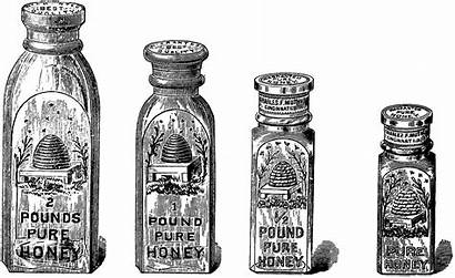 Honey Clipart Jar Clip Apothecary Graphics Bee