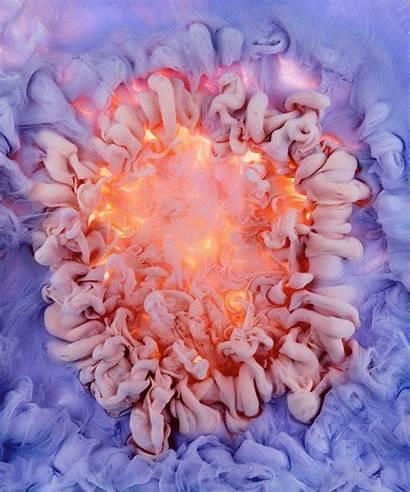 Flowers Swirls Mawson Mark Liquid Saturated Designboom