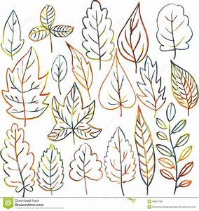 Set Of Autumn And Summer Leaves Stock Vector - Image: 49241138