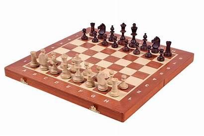 Chess Tournament Staunton Pieces Intarsia Inlaid Insert