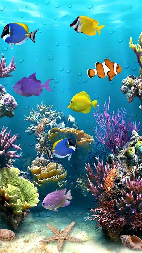 beautiful fish tropical fish wallpaper beautiful sea