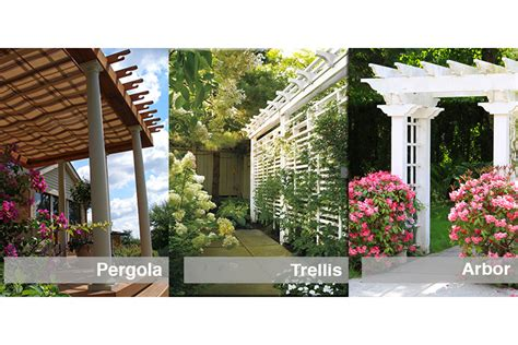 Trellises And Arbors by Pergola Trellis Or Arbor How Can You Tell The Difference