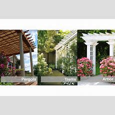 Pergola, Trellis Or Arbor How Can You Tell The Difference?
