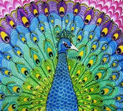 Peacock Angel Bird Trippy Drawing Feather Rainbow