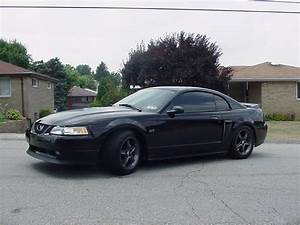 2000 Ford Mustang Test Drive Review - CarGurus