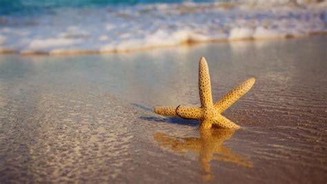 jangan gunakan pasir pantai  bangun rumah