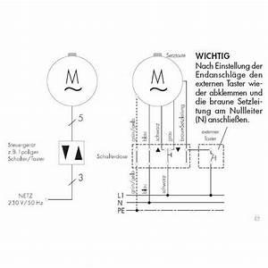 Rolladenmotor Endpunkte Einstellen : rademacher elektronischer mini rohrmotor rollotube standard rtss 10 16z 10 nm baureihe small ~ Buech-reservation.com Haus und Dekorationen