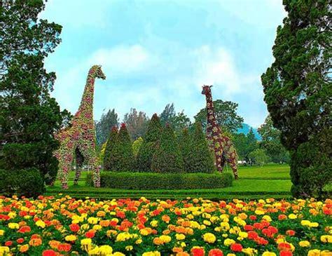 liburan  taman bunga nusantara cipanas  seru