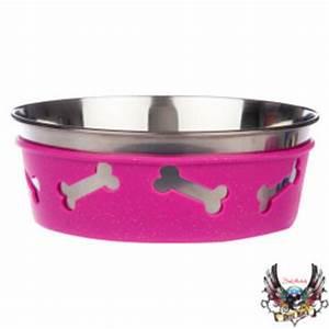 bret michaels pets rocktm bone dog bowl from pet smart With petsmart dog dishes