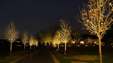 outdoor lighting ryco landscaping