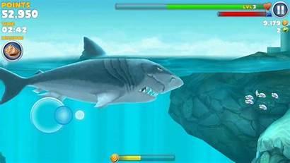 Megalodon Shark Hungry Evolution Eating Santa Bombs
