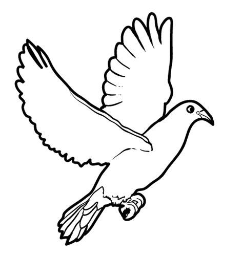 200 gambar burung untuk mewarnai paling baru