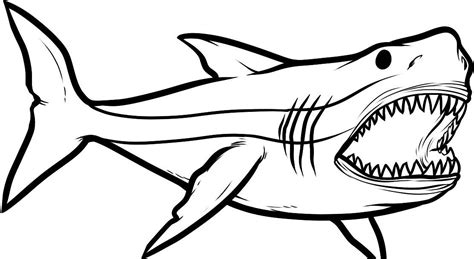 Как нарисовать акулу по шагам