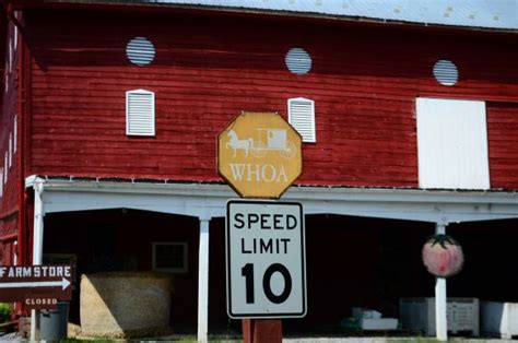 Whoa Amish Version Of A Stop Sign 10 Things Stop Sign