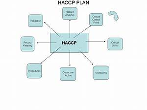 Haccp Flow Chart Cake Ideas And Designs