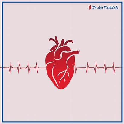 Pressure Blood Control Healthiness Effective Tips