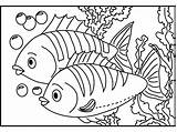Coloring Fish Detailed Popular sketch template