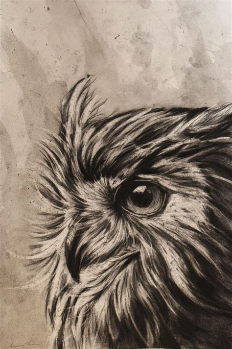 charcoal drawings ideas  pinterest eye study