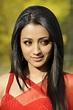 Actress HD Gallery: Telugu movie Actress Trisha Latest ...