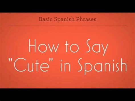 """How To Say """"cute""""  Spanish Lessons  Youtube. Disorderly Persons Offense Banks In Golden Co. Dallas Municipal Courts Security Camera Costs. Lexus Is 250 Horsepower Web Hosting Dedicated. Occupational Therapy Schools In Massachusetts. Low Interest Loans To Pay Off Debt. Sports Data Visualization Practice Gre Verbal. Pmp Certification Bangalore Soma Drug Abuse. Top 10 Fashion Designers Lodge At Deer Valley"""